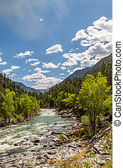 A trip up the Animas Rivera - A train ride leaving from...