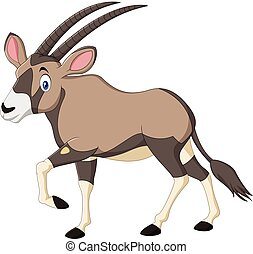 Cartoon Orix gazelle isolated on white background - Vector...