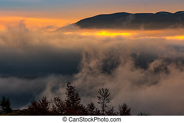 fog rise in mountains at sunrise. gorgeous autumnal nature...