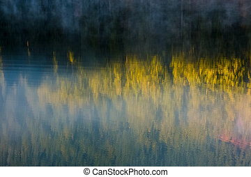 lake surface reflecting spruce forest - beautiful abstract...