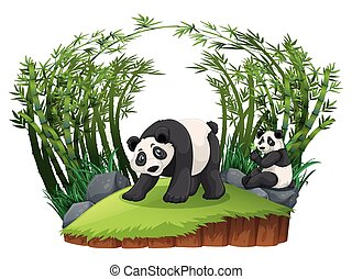 Two pandas in bamboo forest illustration