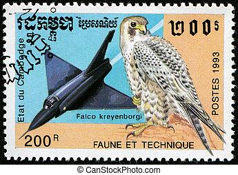 Jet Falcon and bird Falco kreyenborgi - CAMBODGE - CIRCA...