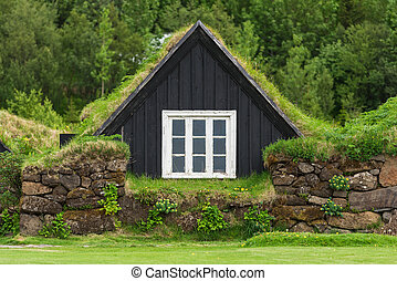 Old turf house in Iceland - Icelandic turf house with grass...