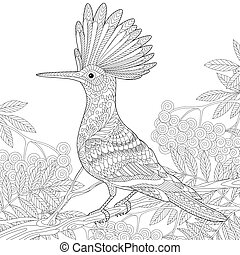 Zentangle stylized hoopoe - Coloring page of hoopoe bird...