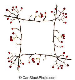Frame made from dry twigs with red berries isolated on white