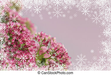 Sedum flowers bouquet and snowflakes frame on gray...