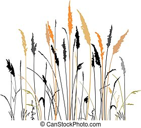 Silhouette of the steppe grass - Silhouette of steppe grass...
