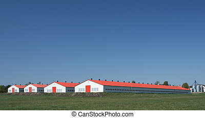 Poultry farm - Modern farm poultry buildings. Agriculture in...
