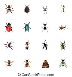 Realistic Wasp, Dor, Grasshopper And Other Vector Elements. Set Of Bug Realistic Symbols Also Includes Jewel, Green, Spinner Objects.
