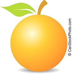 Orange fruit vector icon illustration