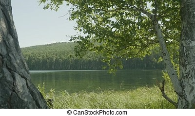 Lake in the forest. In the foreground there are branches of...