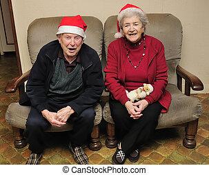 Senior couple celebrating christmas