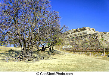 Temple View in Monte Alban, Oaxaca - View of one of the...