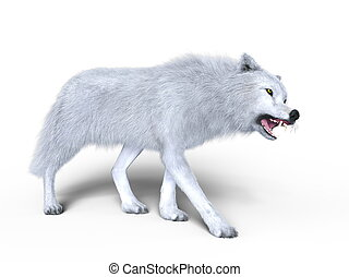 White wolf - 3D CG rendering of a white wolf