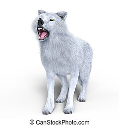 White wolf - 3D CG rendering of a white wolf.
