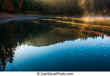 fog rise from the forest lake near the pier - fog rise near...