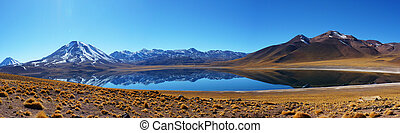 Lagunas Altiplanicas - More than 4000 meters of altitude to...