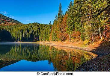 landscape with forest around the mountain lake. beautiful...