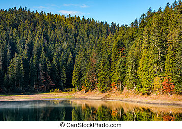 coniferous forest with hazy lake in mountains. beautiful...
