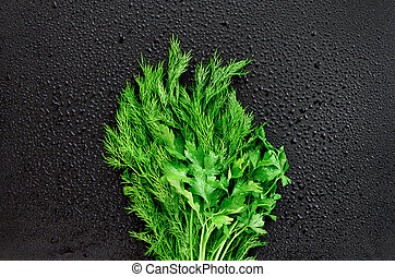 Fresh dill and parsley with water drops on dark background.