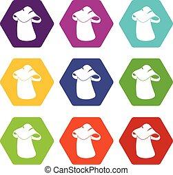 Boletus icon set color hexahedron - Boletus icon set many...