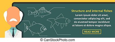 Structure and internal fishes banner horizontal concept....