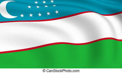 Flying Flag of UZBEKISTAN | LOOPED |