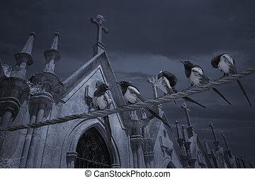 ramo, cementerio, urracas