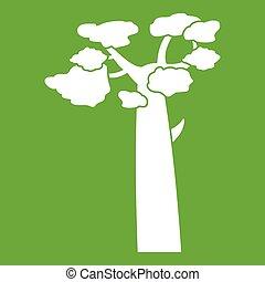 Baobab icon green - Baobab icon white isolated on green...
