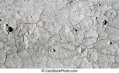 Dry Cracked Ground