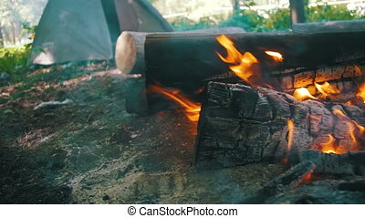 Bonfire Burns in the Camping Amidst a Tent and Logs in the...