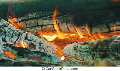 Bonfire of the Branches Burn in the Forest. Burning logs in...