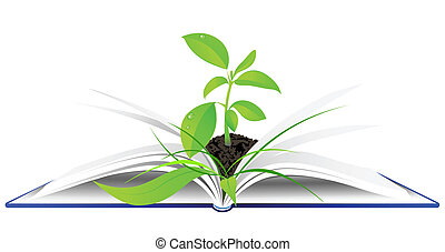 open book with young green plant