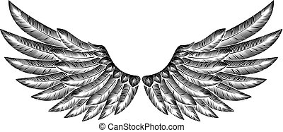 Pair of Bird Wings