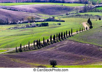 Tuscan landscape from the walls of Pienza - Pienza is a rare...