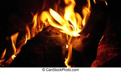 Campfire In The Night. Burning logs in orange flames...