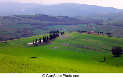 Rural countryside landscape in Tuscany region of Italy