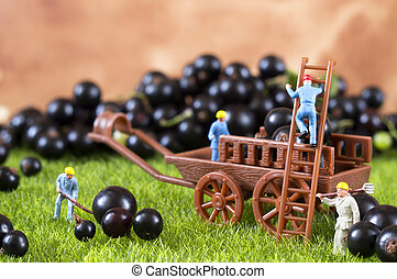 Farming toy people