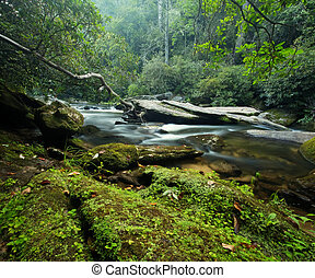Beautiful mountain river and large granite boulders in the lush forests of the Appalachian Mountains in North Carolina