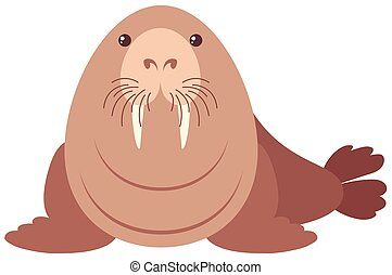 Walrus with happy face illustration