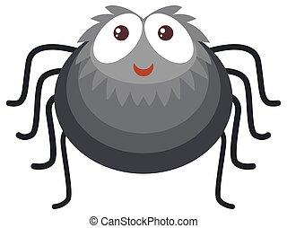 Black spider on white background
