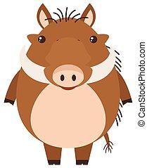 Warthog on white background illustration