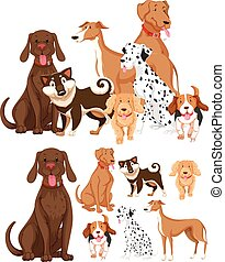 Many types of dogs illustration