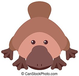 Platypus with happy face illustration