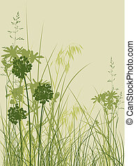 green grass background - background with green grass and...