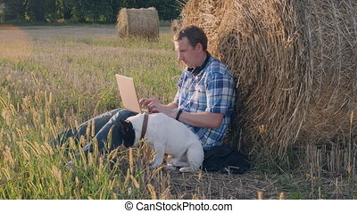 Guy working on computer meadow. - Caucasian man with french...