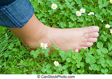 Barefooted - A young woman's foot in the grass - outdoor...