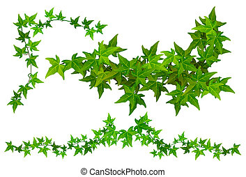 Parts of Ivy. Horizontal and corner Ivy tendril part. File...