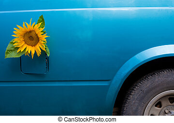 bio-fuel concept - Sunflower growing out of a vehicles gas...