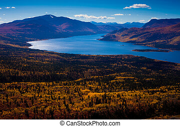 Fish Lake, Yukon Territory, Canada - Fall-colored boreal...
